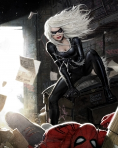 black cat v spiderman by ryan brown