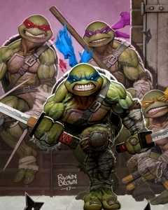 ryan ninja turtle cover 1